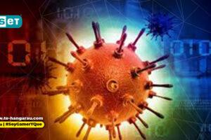 Integridad de la información en tiempos de pandemia